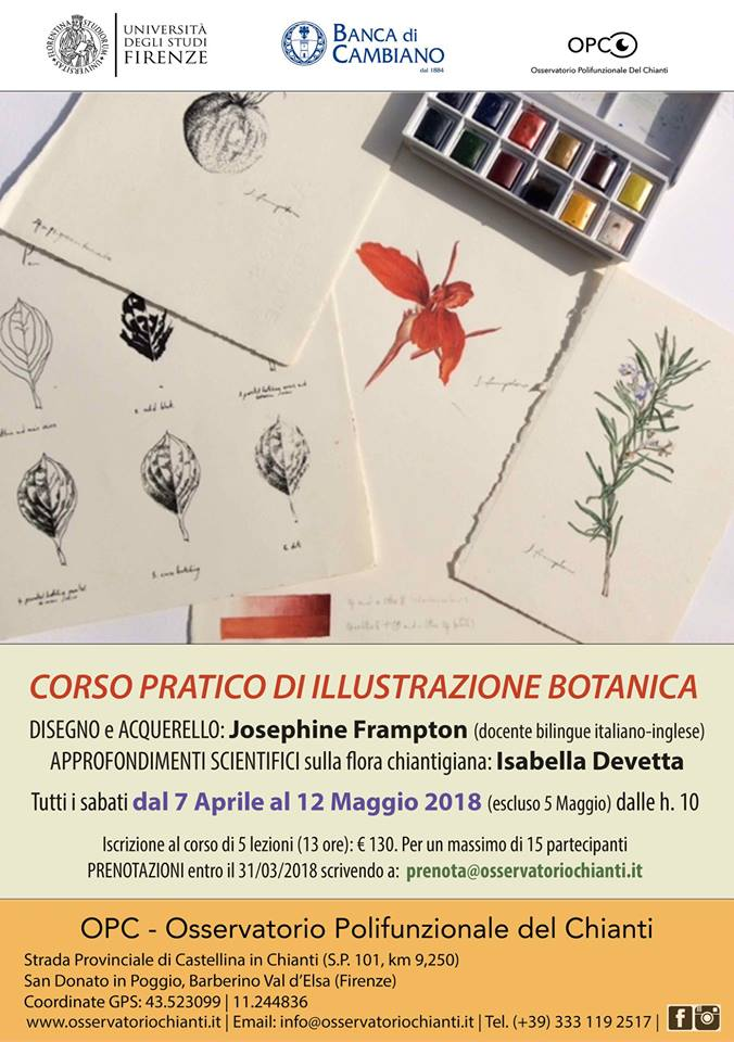 CORSO PRATICO DI ILLUSTRAZIONE BOTANICA @ Parco Botanico del Chianti | Barberino Val d'Elsa | Toscana | Italy