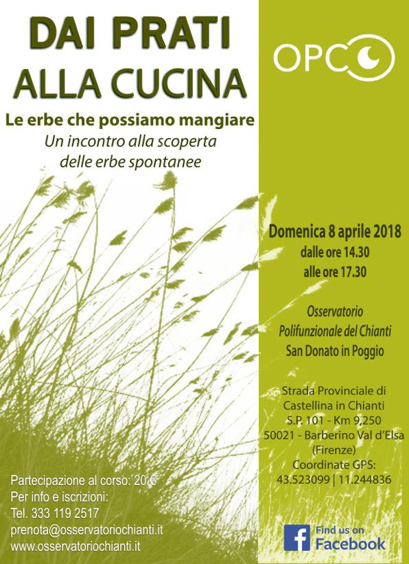 DAI PRATI ALLA CUCINA: Le erbe che possiamo mangiare @ Parco Botanico del Chianti | Barberino Val d'Elsa | Toscana | Italy